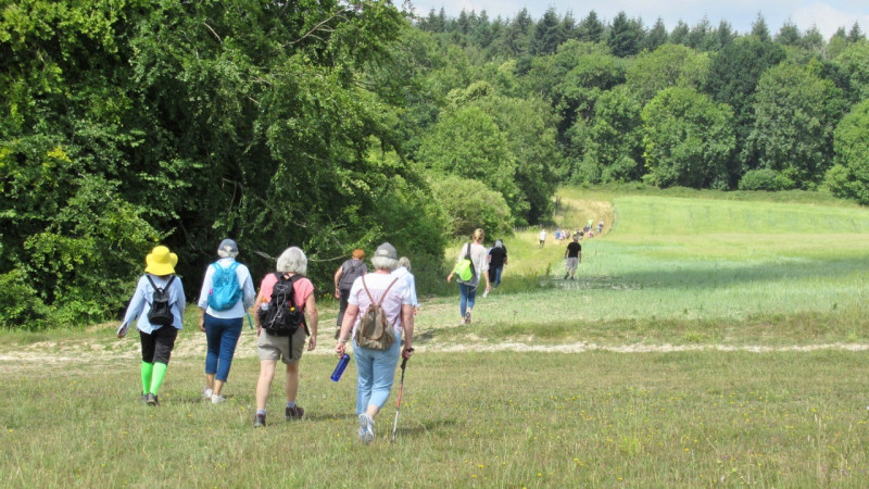 Conservative Council Encourages Walkers to tackle Tidworth trek