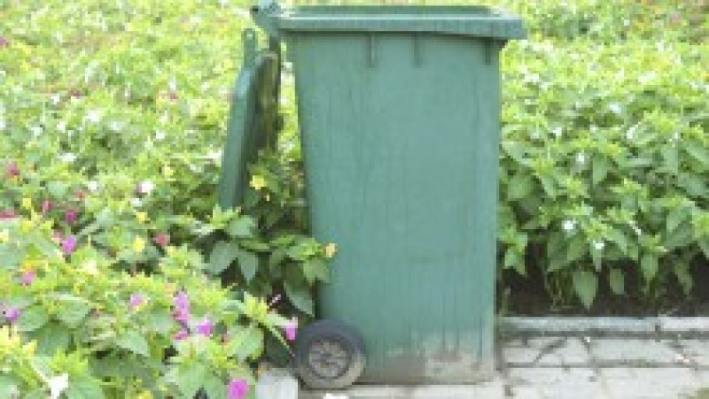 Conservative Councillors Deliver new Garden waste collection service for second year